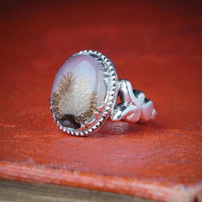 در سیره و روایات اهل بیت، پوشیدن انگشتر عقیق جایگاه والایی دارد.